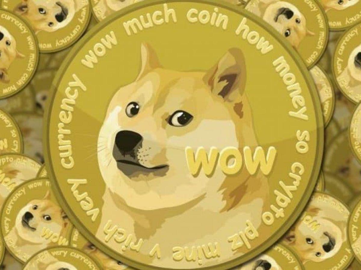 Doge principale